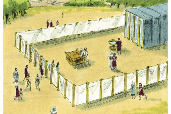 Levitical Sacrifices