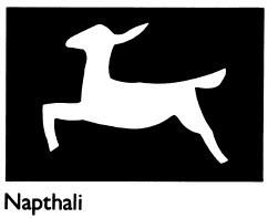 Napthali tribal symbol